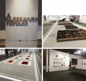 Exposicao_museu_Nacional_Brasilia2